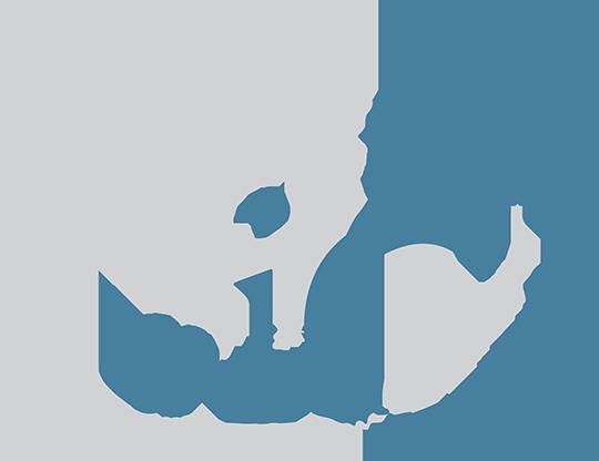 lfdi logo
