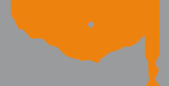 LFDI 2 logo